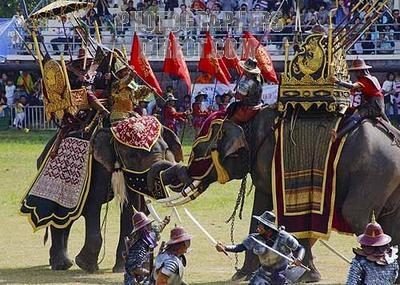 elephants_Surin_festival.jpg